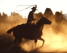 cowboy-with-lasso-wallpapers_11662_1280x1024